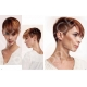 Woman hair book hairdressing PFE15